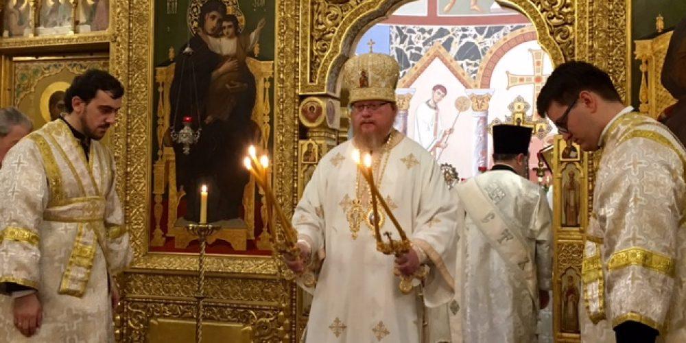 Божественная литургия в Свято-Николаевском кафедральном соборе города Вены